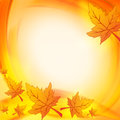Autumn leaves over orange yellow background with illustrated with abstract circles frame with text space Royalty Free Stock Image