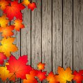 Autumn Leaves over wooden background. Stock Images