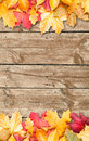 Autumn leaves over wooden background. Copy space. Stock Photos