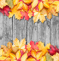 Autumn leaves over wooden background. Copy space. Royalty Free Stock Images
