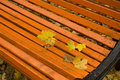 Autumn leaves on a park bench season Royalty Free Stock Image