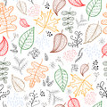 Autumn leaves pattern light background, Vector Royalty Free Stock Photos