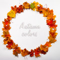Autumn leaves round frame Royalty Free Stock Photo