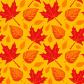 Autumn Leaves seamless Stock Photography