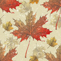 Autumn leaves seamless hand drawn maple and viburnum Royalty Free Stock Photography