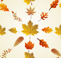 Autumn leaves seamless pattern background eps f tree composition vector file organized in layers for easy editing Stock Photo