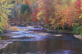 Autumn Leaves By a Stream, Adirondack Mountains, New York Royalty Free Stock Photo