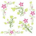 Autumn leaves tendril colorful flowers vector set pink and green Stock Photo