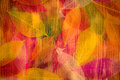 Autumn leaves texture Royalty Free Stock Photo