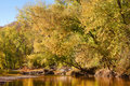 Autumn leaves and trees on river Stock Image