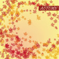 Autumn leaves vector this is file of eps format Stock Photo