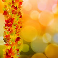 Autumn leaves, very shallow focus. EPS 8 Stock Photography
