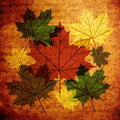 Autumn leaves vintage abstract background Stock Image
