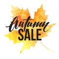 Autumn leaves. Watercolor texture. Fall leaf. Sale lettering design. Vector illustration