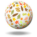 Autumn leaves on a white ball sphere in front of an white background Stock Images