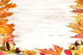 Autumn leaves on white boards background border Royalty Free Stock Photography