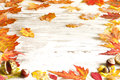 Autumn leaves on white boards background border Royalty Free Stock Photos