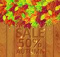 Autumn leaves on a wooden background Stock Photo