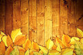 Autumn leaves on wooden background yellow texture as fall season with copy space Royalty Free Stock Photos