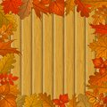 Autumn leaves and wooden fence nature background with framework of of various plants board Stock Photos