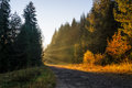 Autumn light sun rays in the morning in rodopi mountain Royalty Free Stock Photo