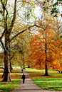 Autumn in London public park Royalty Free Stock Images