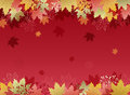 Autumn maple leaves background file contains clipping mask with un cropped images gradient transparency Stock Photography