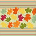 Autumn maple leaves background vector Royalty Free Stock Images