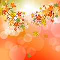 Autumn maple leaves background vector illustration with transparency eps Royalty Free Stock Photo