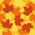 Autumn maple leaves background vector seamless pattern Royalty Free Stock Images
