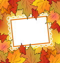 Autumn maple leaves with floral greeting card Royalty Free Stock Photos