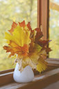 Autumn mapple leaves bunch maple in vase on old wooden windowsill Stock Photos