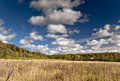 Autumn meadow and forest under very picturesque cloudy sky Stock Photography