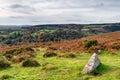 Autumn moorland on dartmoor national park in devon Stock Image