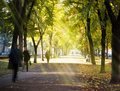 Autumn morning city alley Royalty Free Stock Photo