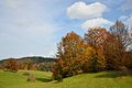 Autumn mountain landscape with green field and colorful forest Stock Photos