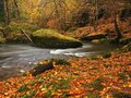 Autumn mountain river with blurred waves fresh green mossy stones colorful fall view into and boulders on bank covered Stock Images