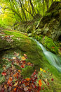 Autumn mountain stream Stock Photography