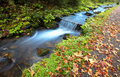 Autumn mountain waterfall Royalty Free Stock Photos