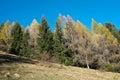 Autumn on the mountains in val di scalve alps italy Stock Photos