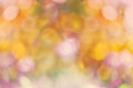 Autumn nature bokeh background with blurred lights Royalty Free Stock Image