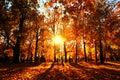 Jeseň príroda z v moskva