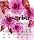 Autumn November calendar with pink daisy flowers Vector. Floral watercolor style decors Royalty Free Stock Photo