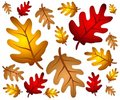 Autumn Oak Leaves Background Royalty Free Stock Photo