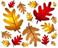 Autumn Oak Leaves Background Royalty Free Stock Photo