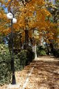 Autumn In October In The Slanic Prahova City Park  1
