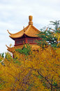 Autumn Pagoda Royalty Free Stock Photo