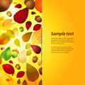 Autumn panel background with sample text tumbling acorns and leaf and Stock Images