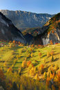 Autumn panorama colors romania Royalty Free Stock Photos