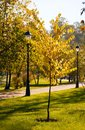 Autumn park. Stock Photography